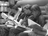People reading in a bookstore