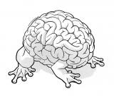A brain with frog feet