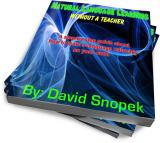 Fake ebook cover
